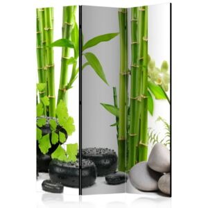 Paravento - Bamboos and Stones [Room Dividers]