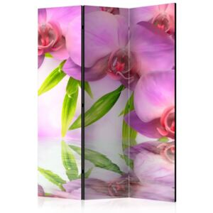 Paravento - Orchid Spa [Room Dividers]