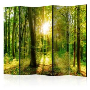 Paravento - Forest Rays II [Room Dividers]