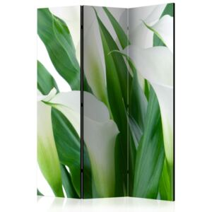 Paravento - bunch of flowers - callas [Room Dividers]
