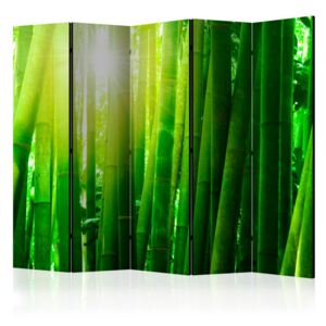 Paravento - Sun and bamboo II [Room Dividers]