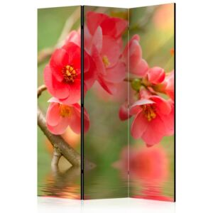 Paravento - Azalea reflected in the water [Room Dividers]
