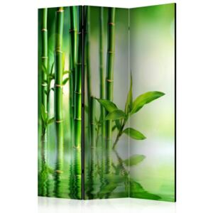 Paravento - Bamboo Grove [Room Dividers]