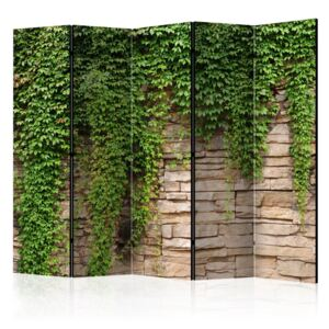 Paravento - Ivy wall II [Room Dividers]