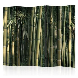Paravento - Bamboo Exotic II [Room Dividers]