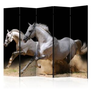 Paravento - Galloping horses on the sand II [Room Dividers]