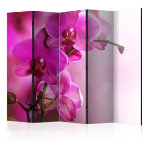 Paravento - Pink orchid II [Room Dividers]