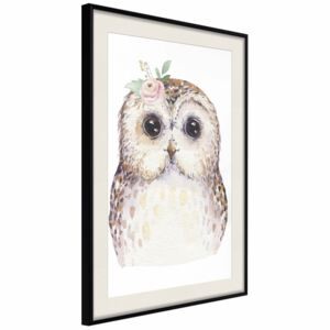 Poster: Cheerful Owl [Poster]