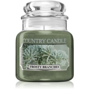 Country Candle Frosty Branches candela profumata 104 g
